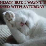 Funny Monday Morning Quotes And Sayings Facebook