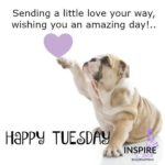 Funny Tuesday Morning Greetings Twitter