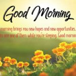 Good Morning Greetings Images Pinterest