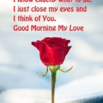 Good Morning My Darling Quotes Twitter
