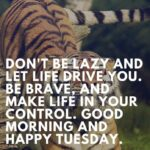 Lazy Tuesday Quotes Facebook